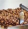 コーヒー定期便/サブスクリプション ミックスオリジンコース