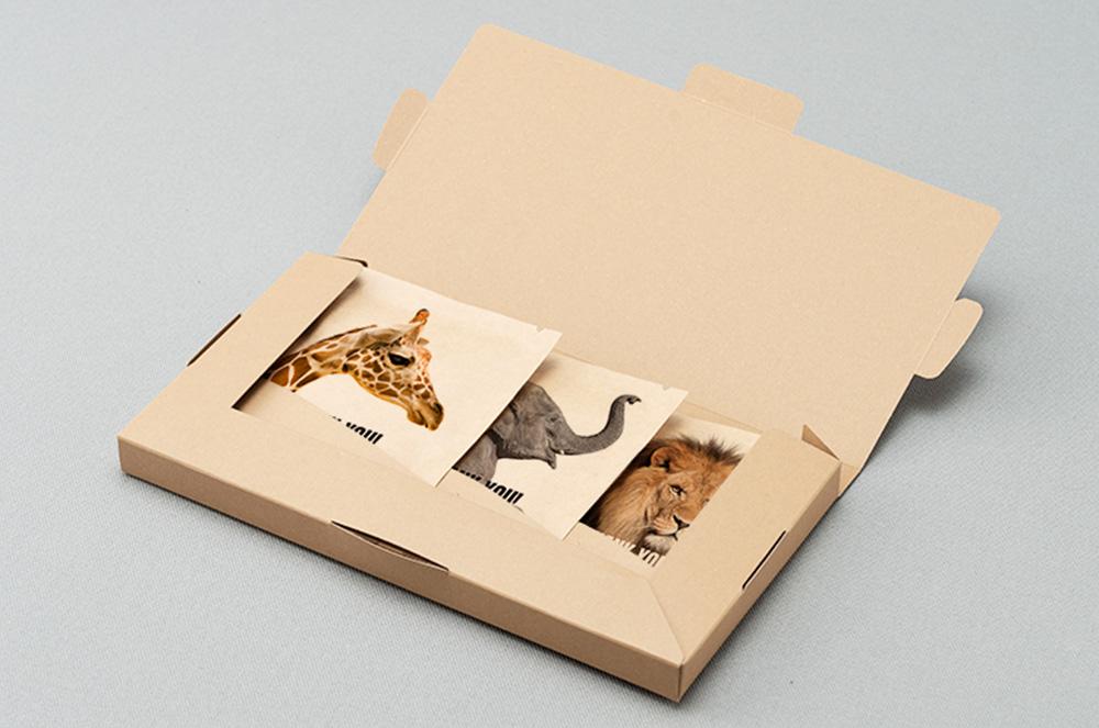 3個用平形ボックス