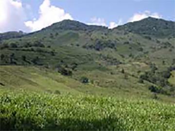 Brazil(ブラジル)/Serra das Tres Barras(セーハ・ダス・トレス・バハス)