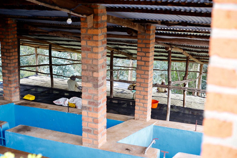 Rwanda(ルワンダ)/Mbilima 0205(ミビリマ・0205)