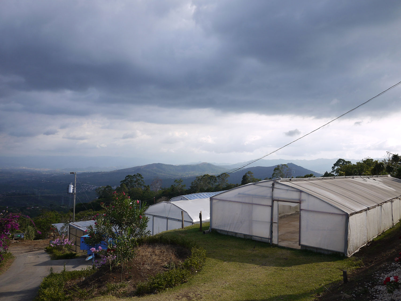 Costa Rica(コスタリカ)/Sin Limites(シン・リミテス)