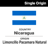 Nicaragua-Limoncillo-Pacamara-Natural