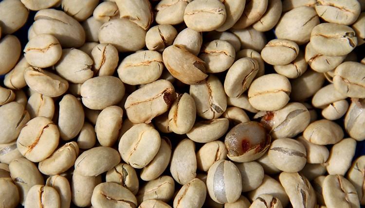 bean-dry