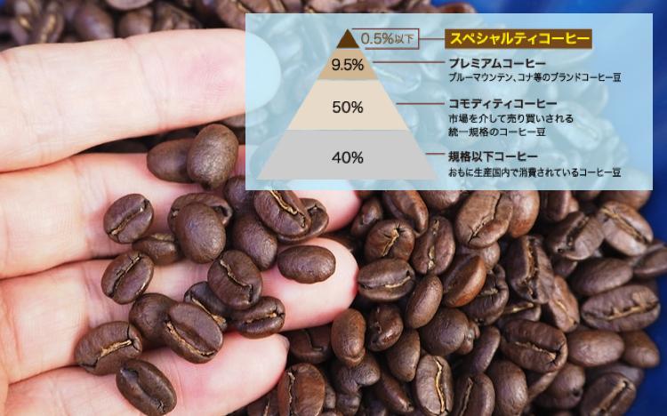 スペシャルティコーヒー オリジナル