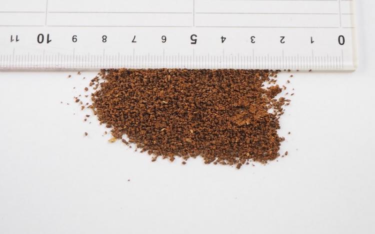 コーヒー豆の挽き目