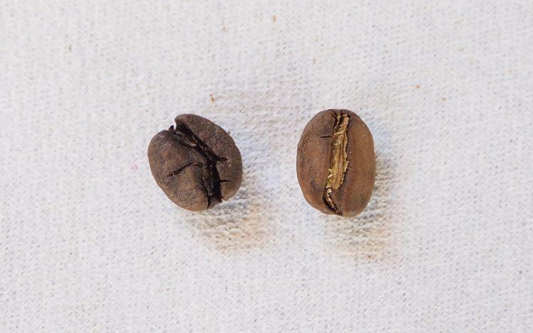 コーヒー豆 不良品