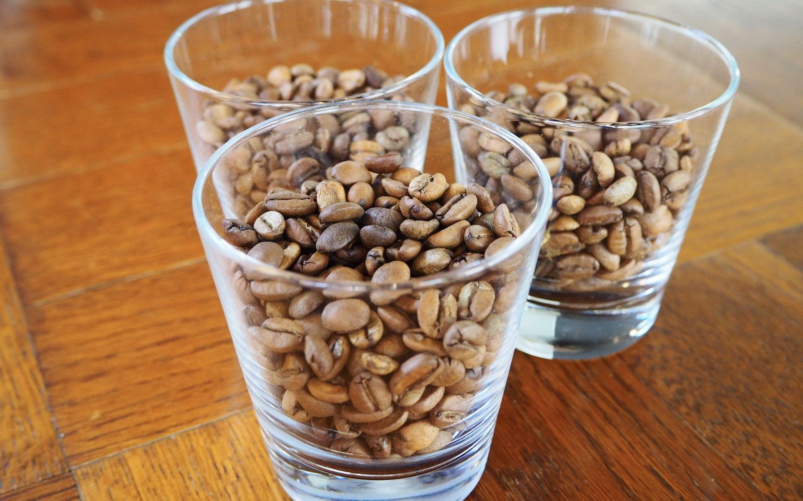 コーヒーの欠点豆集めてみた