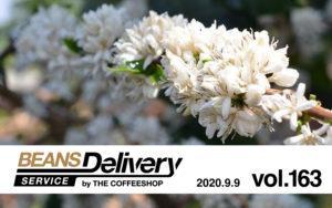 スペシャルティコーヒー定期便(サブスクリプション)Beans Delivery Service 163