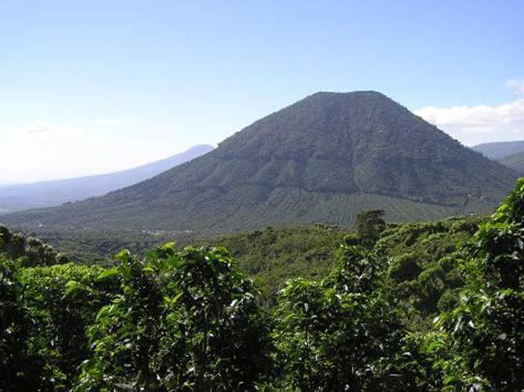 El Salvador/Sante Rita Natural(エルサルバドル/サンタ・リタ・ナチュラル)