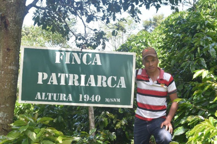 Honduras/Patriarca(ホンジュラス/パトリアルカ)