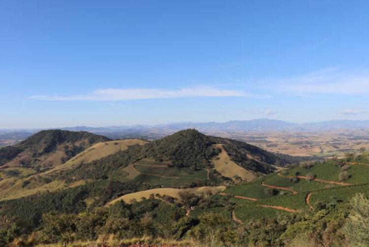 Brazil/Rancho Sao Benedito(ブラジル/ランチョ・サン・ベネディト)