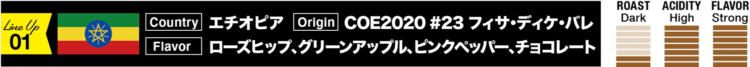 エチオピア/COE2020 #23 フィサ・ディケ・バレ