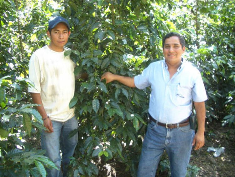Guatemala/Santa Cruz(グアテマラ/サンタ・クルス)