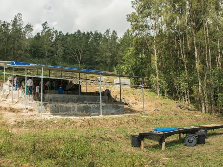 East Timor/Raimutin(東ティモール/ライムティン)